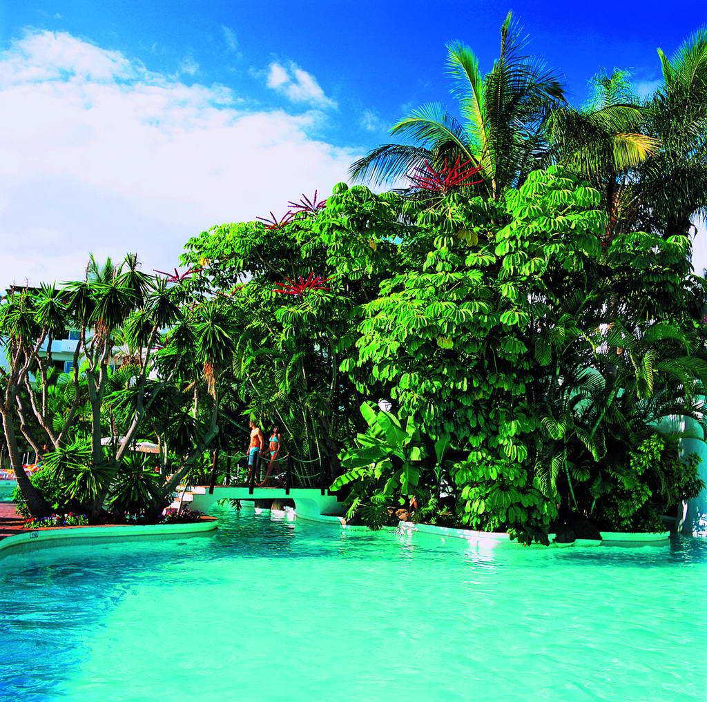 Hotel jardin tropical tenerife 4 for Hotel jardin tropical tenerife todo incluido